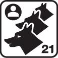 Evolutif 1 à 21 chiens