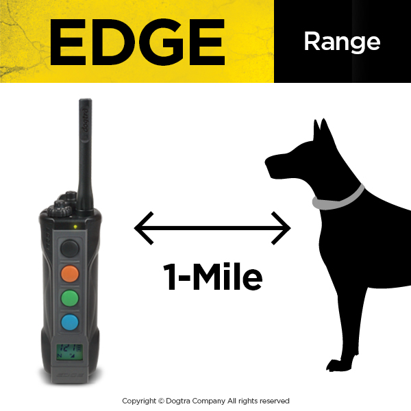 E-Collar for Dog Training | Electronic Training & Shock Collars For