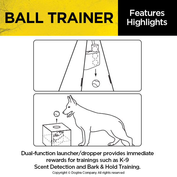 BALL TRAINER