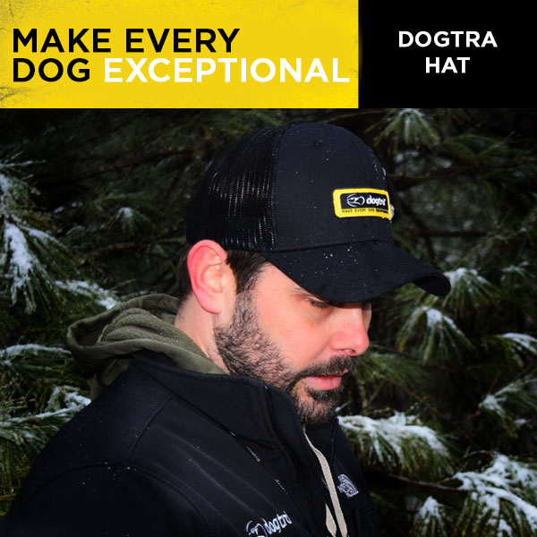 Dogtra Hat - Black Mesh