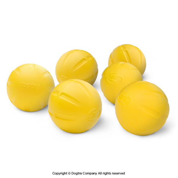 Dogtra Yellow Training Ball